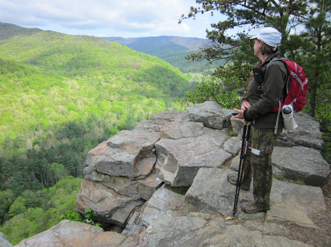 Hone Quarry Hikes - Friends of Shenandoah Mountain